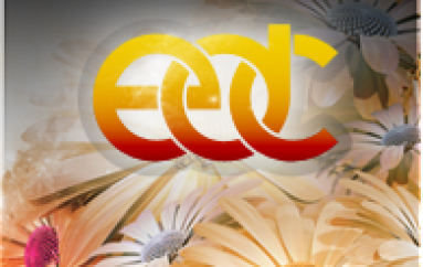 Electric Daisy Festival Coming To New York!