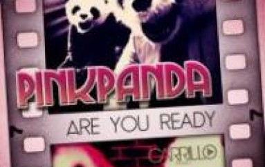 ARTIST SPOTLITE: PINK PANDA – YEAR OF THE PANDA 2014