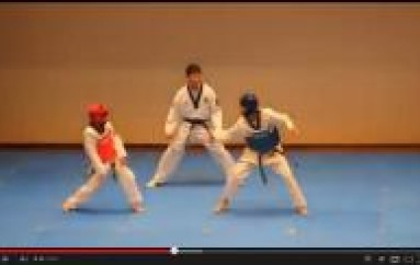 REMIX CULTURE: Taekwondo Match Turns Into Dance Battle