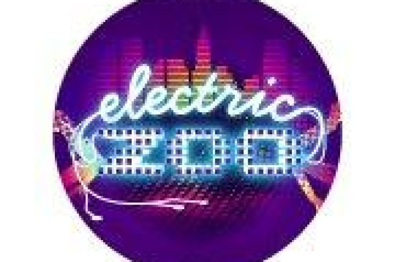 Electric Zoo 2012 Tix Already On Sale? Yep!